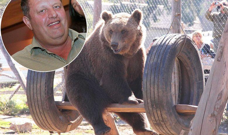 macola-medvjed