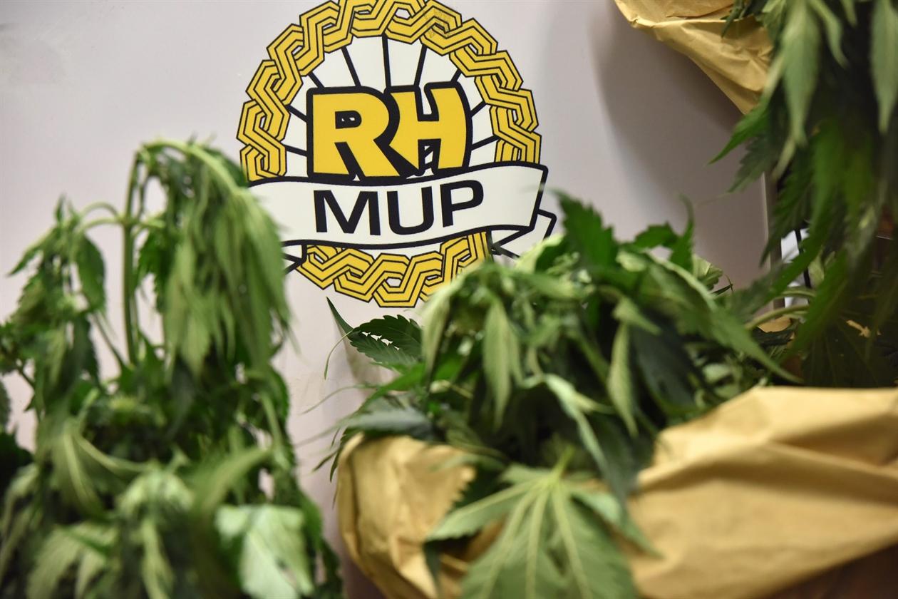 marihuana18-211118