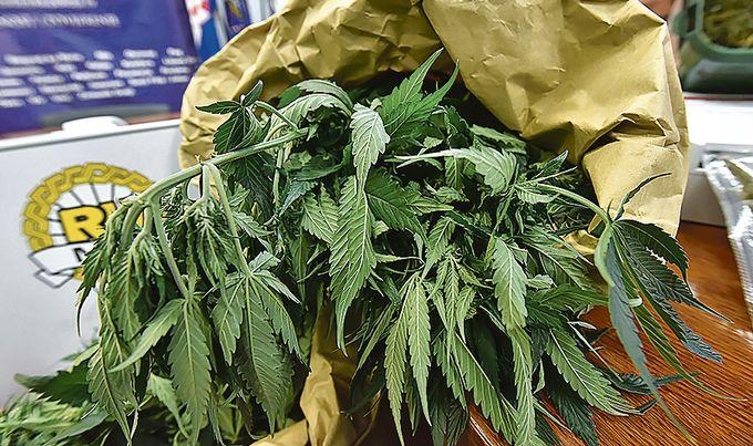 marihuana13-211118