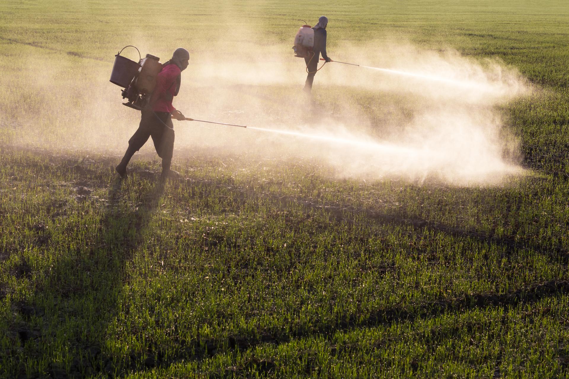 Glifosat je najčešće korišten herbicid u Hrvatskoj