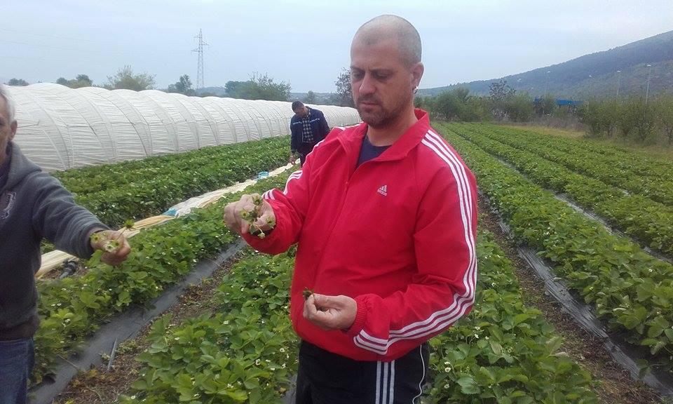 Tomislav Govorko