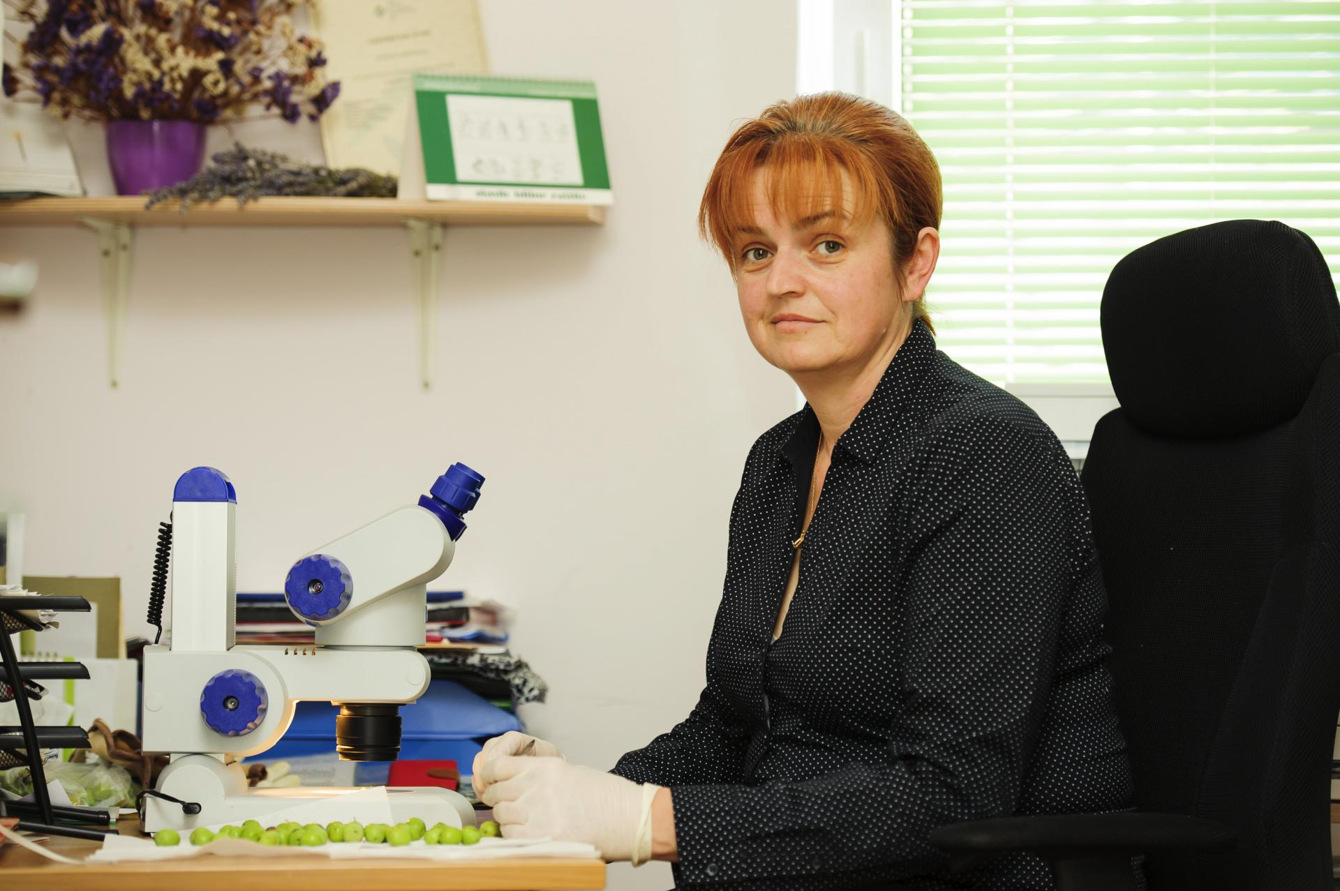 Gordana Kožarić-Silov