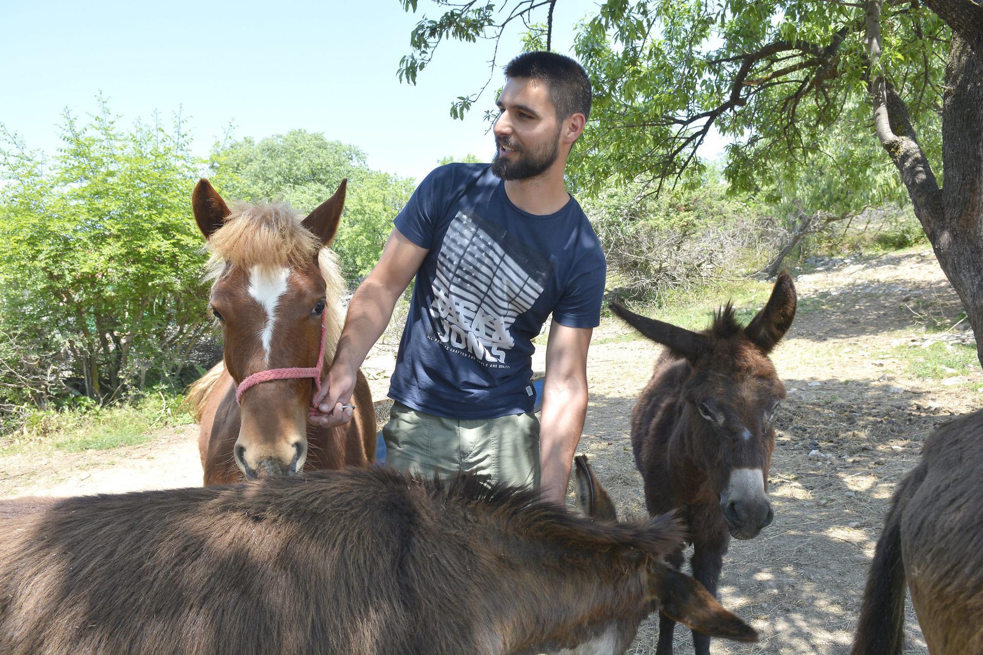 Ante Dujić sa svojim magarcima