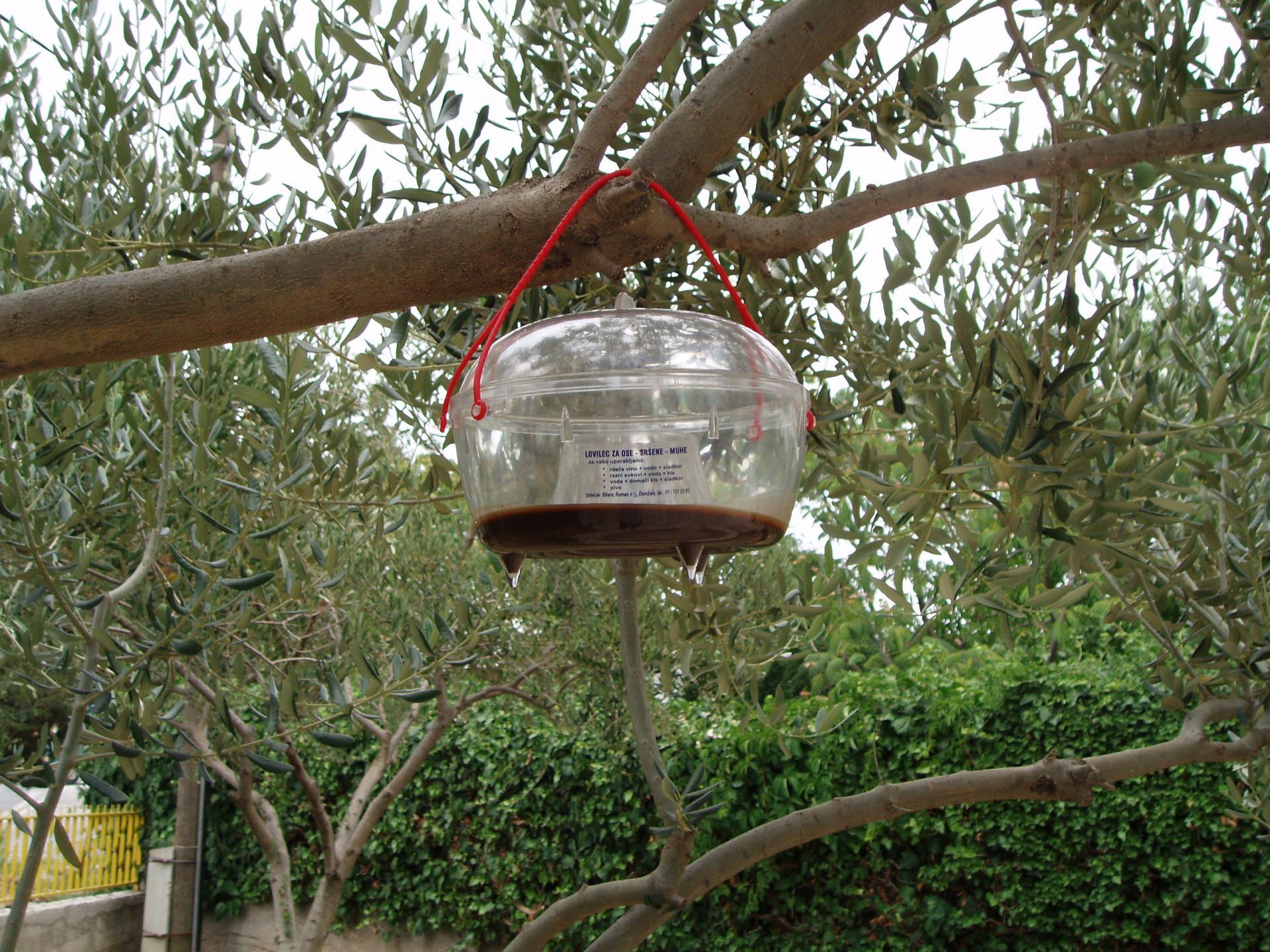Muholovka punjena hidroliziranim proteinom Buminal i insekticidom