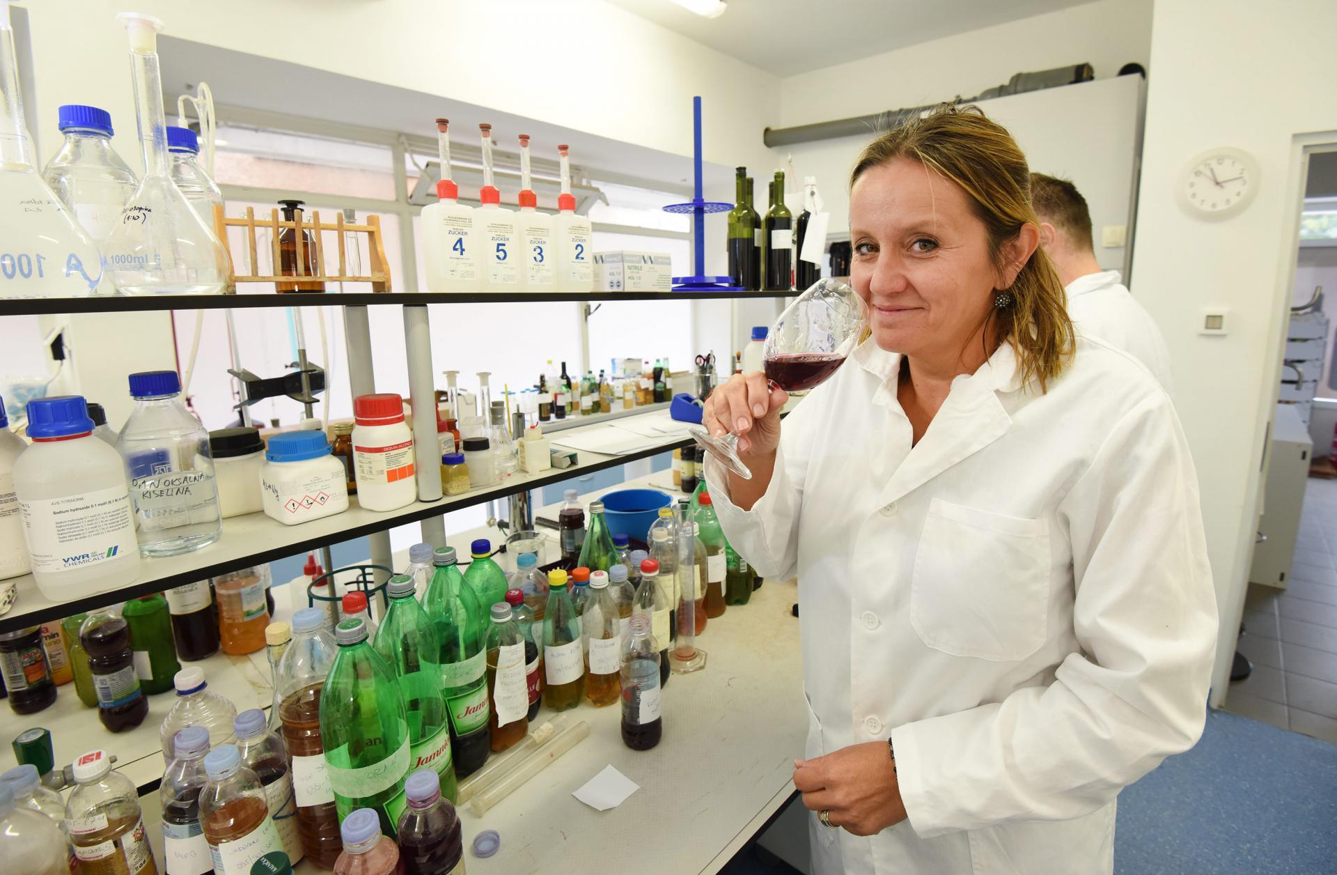 Voditeljica Enološkog laboratorija Marina Pavlović: Berba je još u tijeku, a postoji disbalans šećera, koji su previsoki, i kiselina, koje su preniske