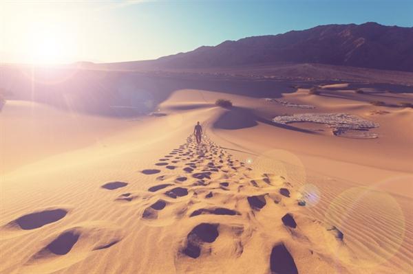 5_pustinja
