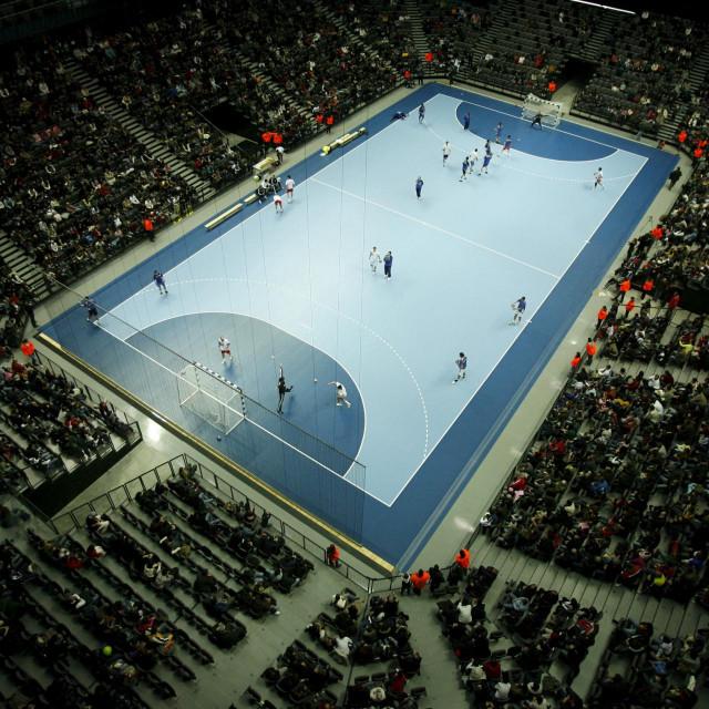 Zbog Svjetskog rukometnog prvenstva 2009. godine diljem zemlje niknule su nove sportske dvorane