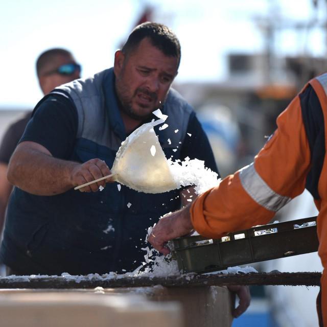 Završio je zimski lovostaj na plavu ribu, a ribari su jutros u ribarskoj luci u Gaženici iskrcavali svježu srdelu koju su sinoć ulovili u prvom ovogodisnjem izlasku na more.<br />