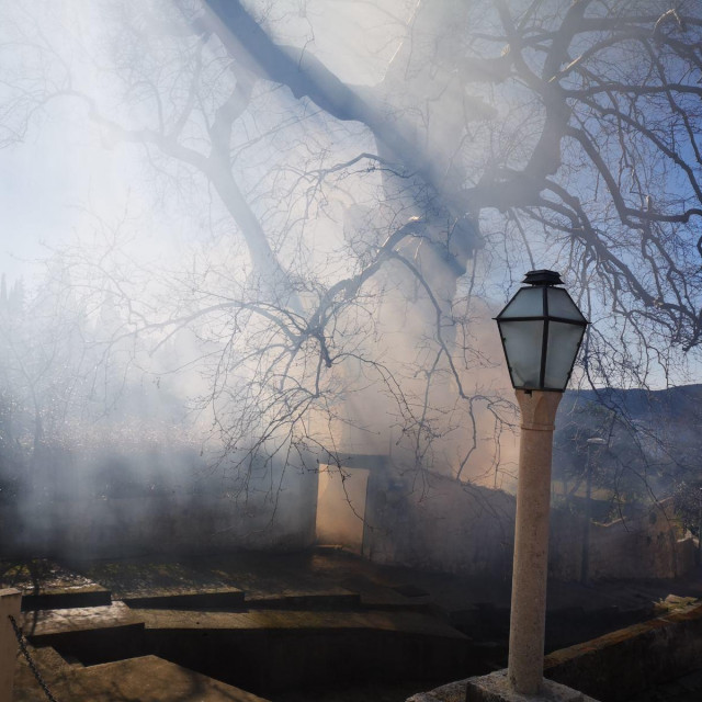 Jutros se zapalila trula grana donje platane u Trstenom