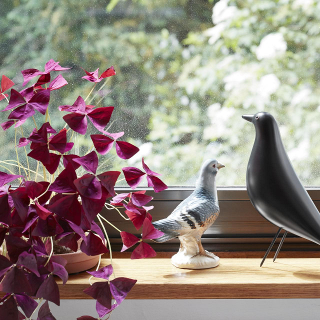 'Eames House Bird', VITRA/THEMELIA