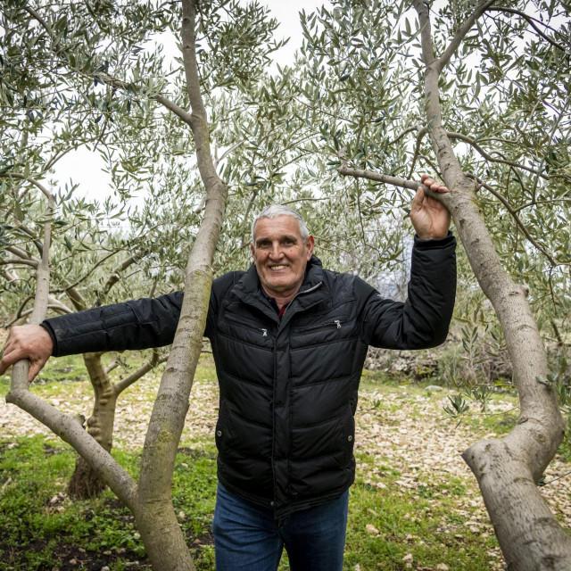 Drago Jakelić dobio je zabranu korištenja vode s prirodnog izvora za zalijevanje maslina