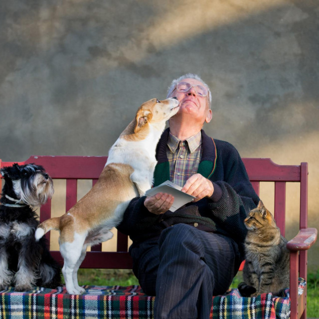 Ljudi prenose među sobom 'koronu' , a psi i mačke nemaju veze s novim virusom -SARS-CoV-2