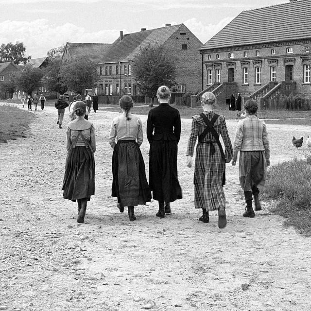 'Bijela vrpca' studija je miljea rigidne društvene hijerarhije sela, ispod kojeg izbijaju naznake tjelesnog i seksualnog zlostavljanja, kao i pasivne agresije