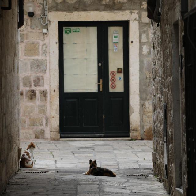 galerija praznog grada, Dubrovnik