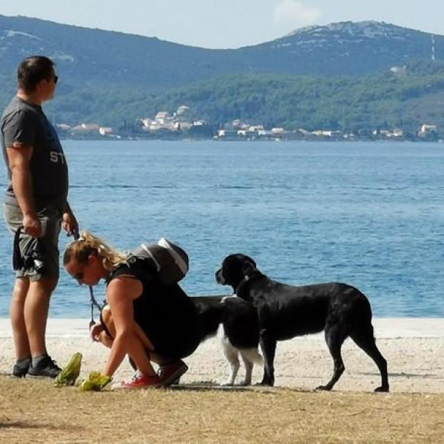 Mole se vlasnici pasa kupe za svojim ljubimcima!