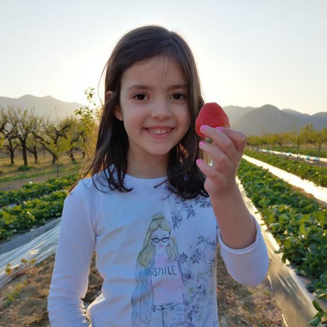 Marta Erceg iz Dusine s ponosom pokazuje plod s lokalnih nasada