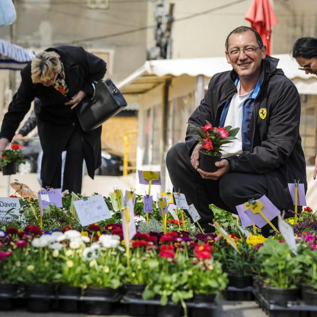Davor Flajšman iz Varaždina na šibenskoj pijaci prodaje sadnice cvijeća<br />