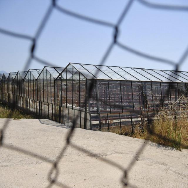 Otužna slika zapuštenih staklenika u Resniku - potvrda propasti tvrtke 'Kaštelanski staklenici' koja je završila u stečaju<br />