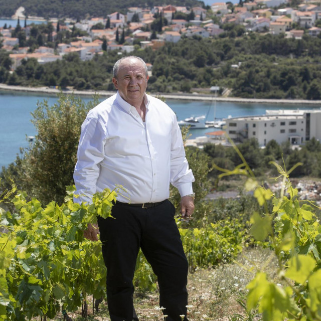 U mladome vinogradu, na brdu iznad svog hotela, u Rogoznici<br />