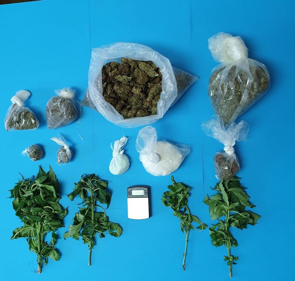 Zapljenjena marihuana i speed