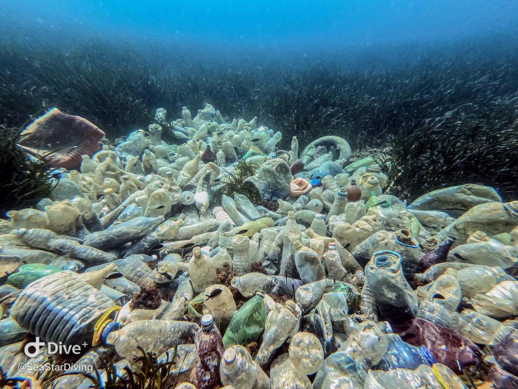 Akcija čišćenja plastičnog i rugog otpada u podmorju Molunta