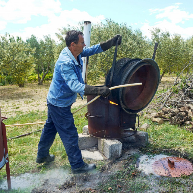 Pecara, ili kako se u Dalmaciji u šibenskom kraju zove -kotlarica, smještena na livadi pored samog maslinika Josipa Šiška