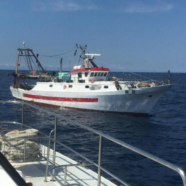 Talijanska brodica
