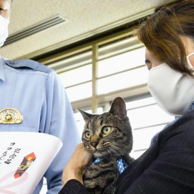 Mačka Koko dobila nagradu za akciju spašavanja