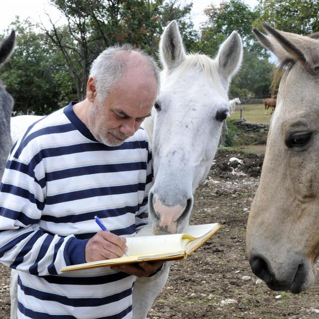 Reporter je dobro znao da su pametniji čovjek i magarac nego sam čovjek<br />