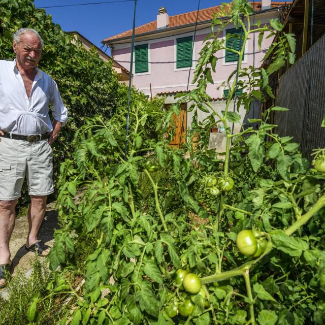 <br /> <br /> Ante Juras u svom domu i vrtu ispred kuce.<br /> <br />