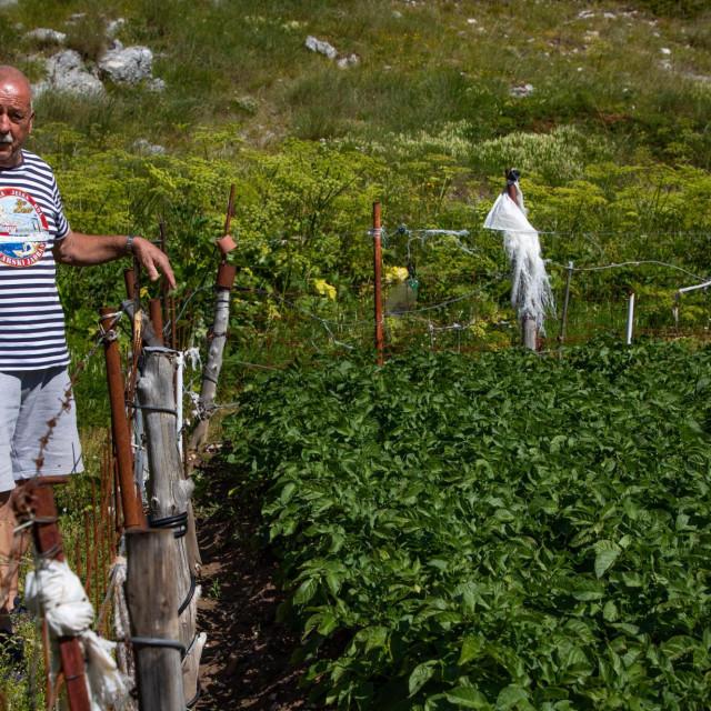 Mario Mendeš ponosan je na plodove svog rada