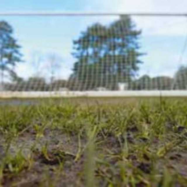 Zbog alergije na travu jedna je igračica napustila igru, dvije zbog ozljede, a dvije nisu niti započele susret
