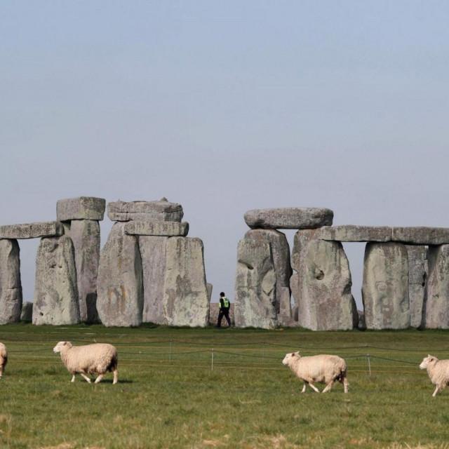 """""""Nadam se da će zbog onog što smo saznali ljudi razumjeti više o ogromnom pothvatu izgradnje Stonehengea"""""""
