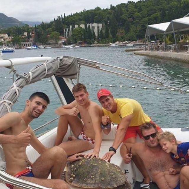 Hrabri spasioci s morskom kornjačom