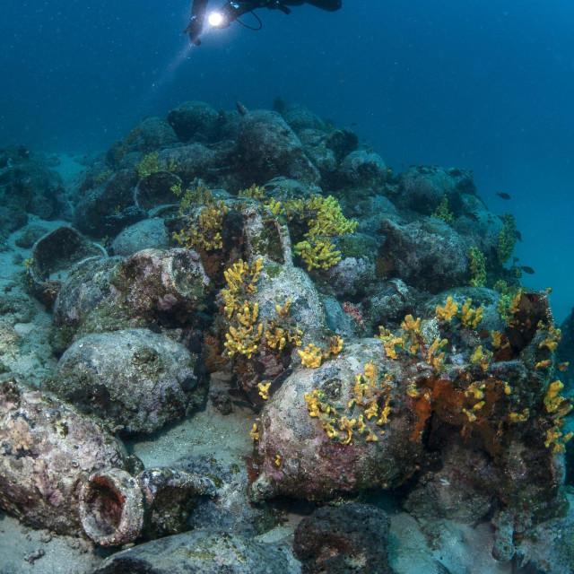 Bogatstvo hvarskog podmorja predstavlja se splitskoj publici