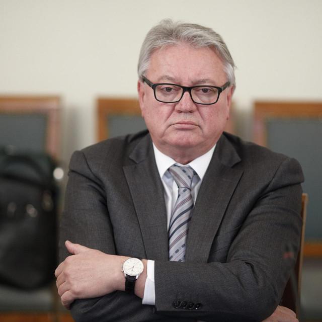 Robert Škifić, ravnatelj LUZ-a