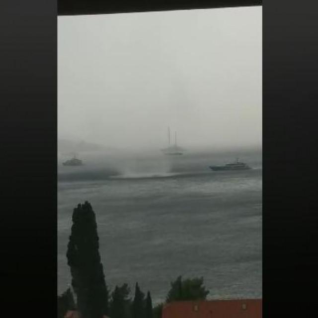 Ogromna pijavica snimljena u moru kod Plata