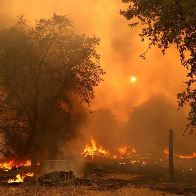 U kalifornijskom Fairfieldu vatra je uništila 50 domova, a spaljeno je i 45.000 hektara površine