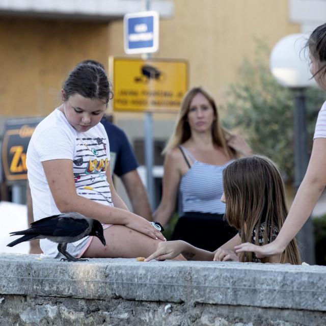 Djeca hrane vranu na kamenom mostu