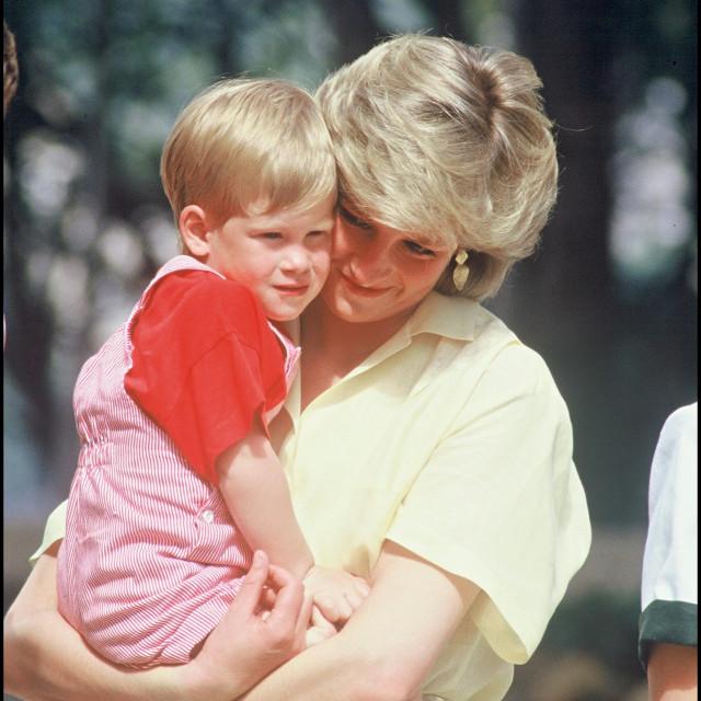 Mama Diana s Williamom i Harryjem