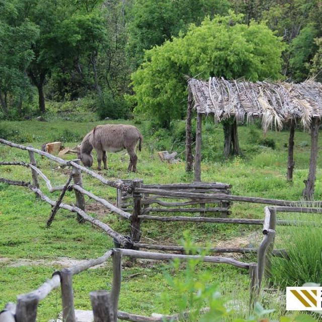 Dubrovačko-neretvanska županija i Regionalna razvojna agencija DUNEA i ove godine organiziraju ''ZLATNU NARANČU'' - izbor najboljih primjera ruralnog turizma u DNŽ