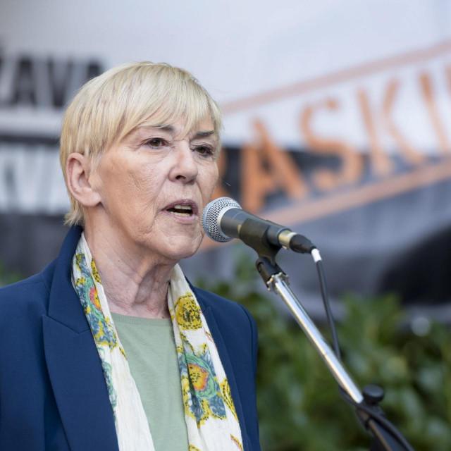 Profesorica i nevladina aktivistica Sanja Sarnavka