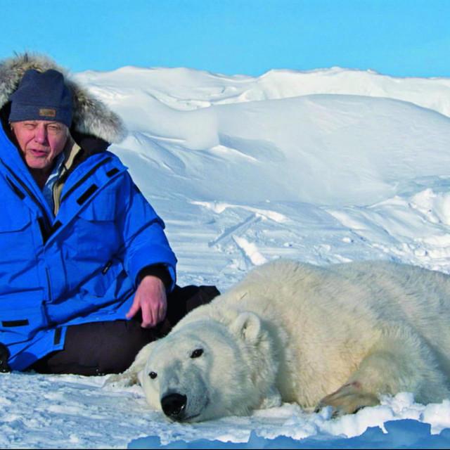Sir David Attenborough u nešto više od četiri sata skupio je milijun pratitelja na Instagramu<br />