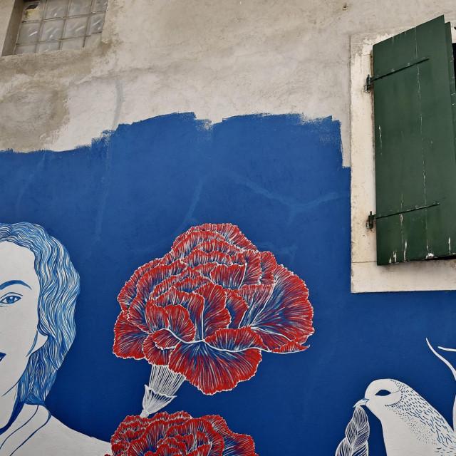 Mural u čast Palmine Piplović
