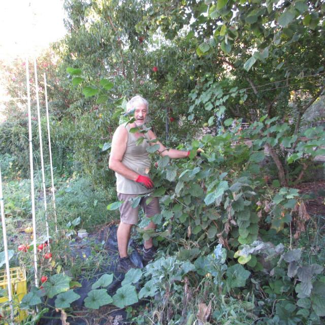Jure Kurtović na svojoj egzotičnoj plantaži