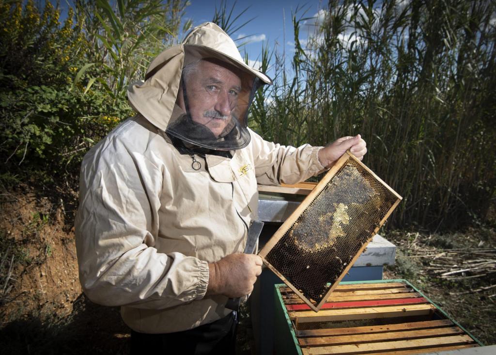 Borislav Palčić:<strong> </strong>U svojim najboljim pčelarskim godinama uhvatio bih i deset tona meda, a sad kad bih našao i tonu, bio bih sretan