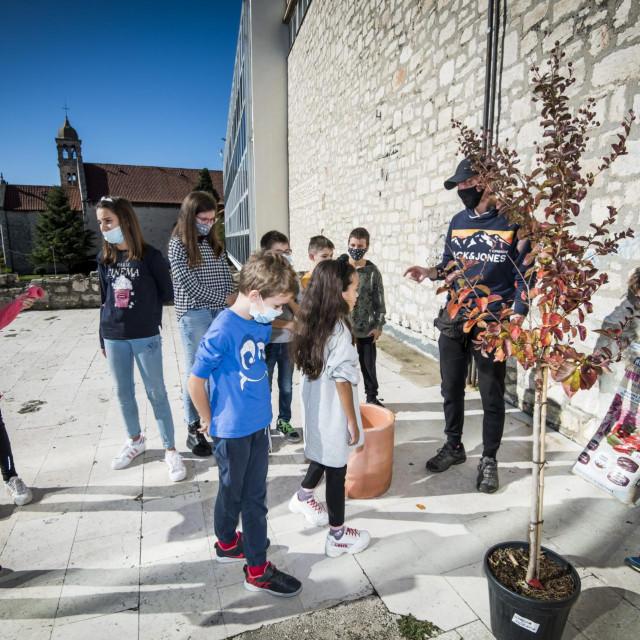 Sibenik, 171020.<br /> Po uzoru na gradjansku inicijativu Zasadi drvo, ne budi panj, knjiznica je organizirala radionicu za djecu na kojoj ih je Vice Krncevic, dipl. ing. sumarstva naucio i pokazao posaditi stablo.<br />