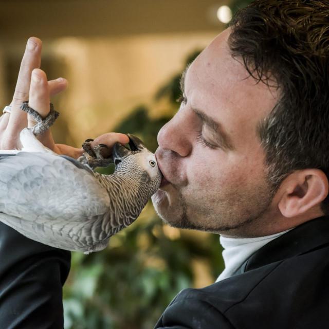 Papagaj Koko s vlasnikom Žarkom Šuperbom