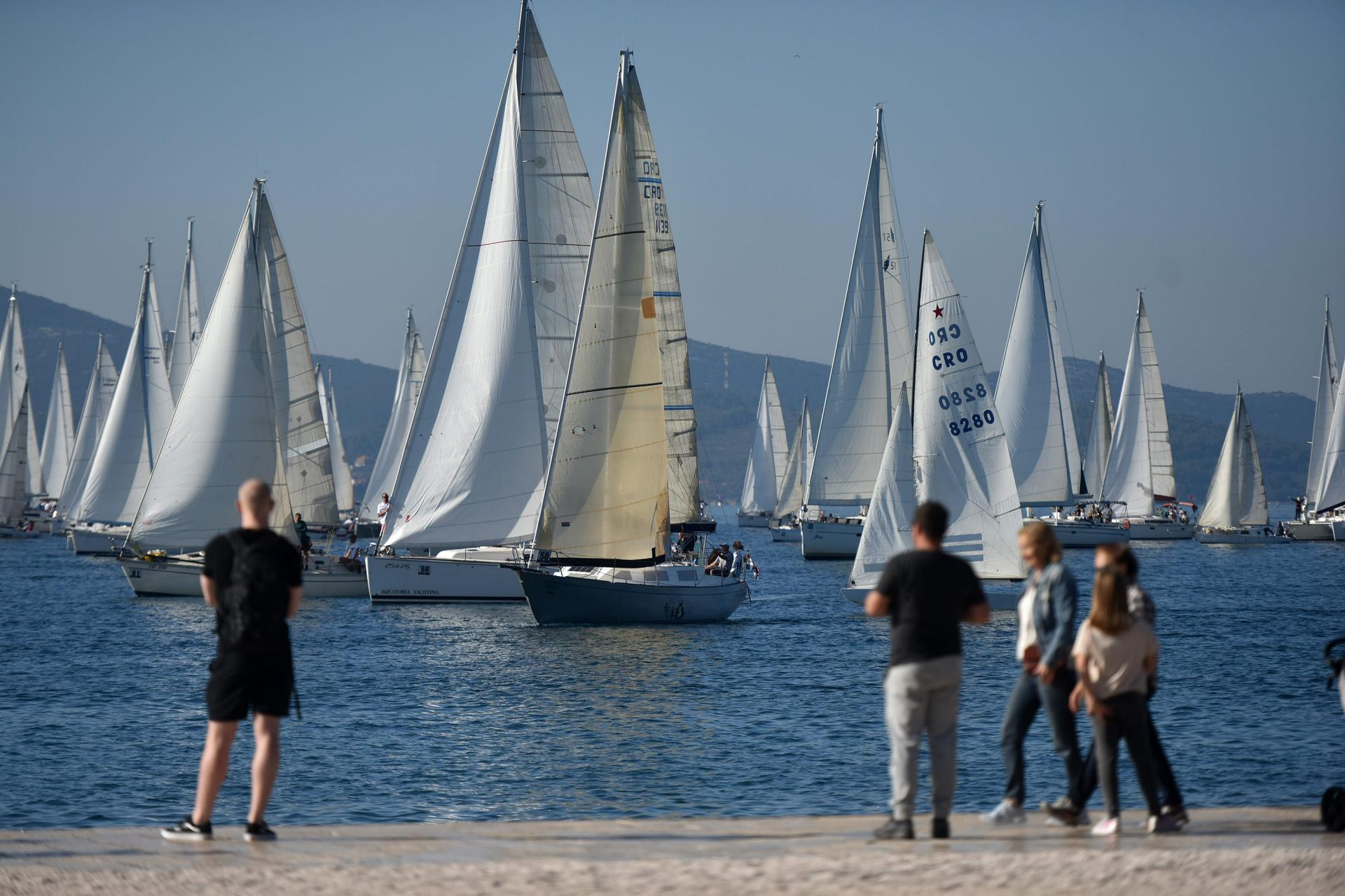 Danas se jedri Zadarska koka - najmasovnija lokalna regata krstaša