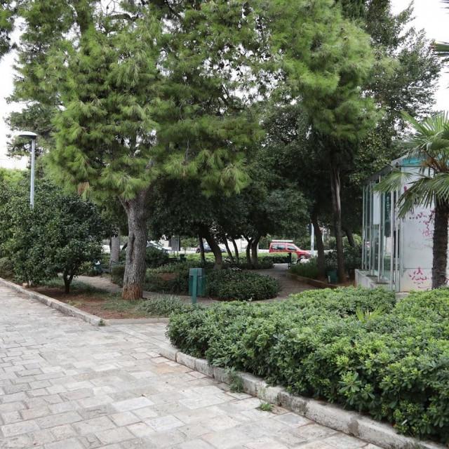 Zeleni katastar obuhvaća javne površine o kojima skrbi Vrtlar